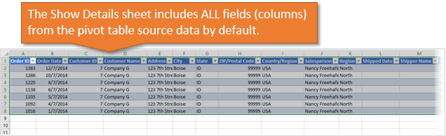 Show Details Sheet Includes All Fields Columns from the Pivot Table